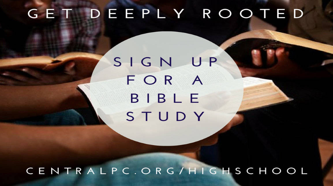Newsletters - Bible Study Tools